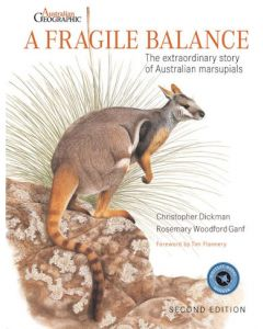 Fragile Balance (A) - 2nd Edition