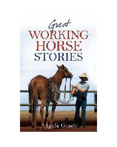 Great Working Horse Stories